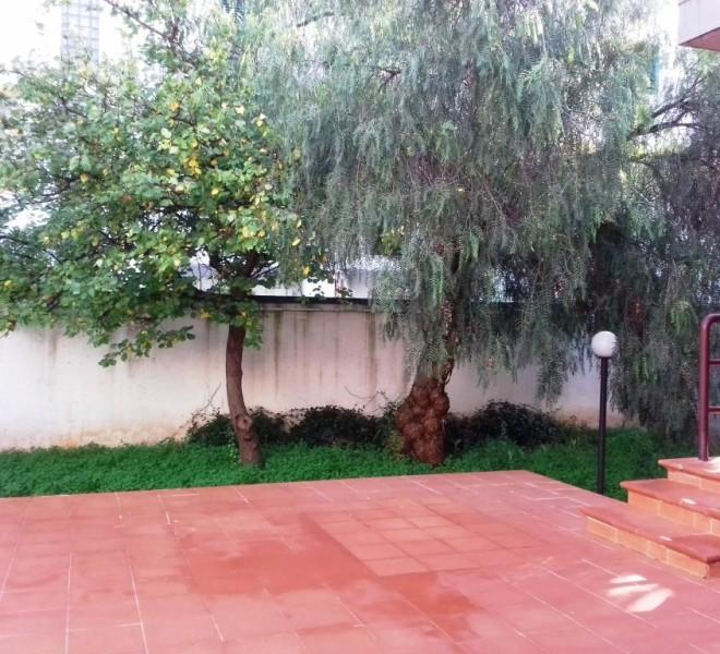 patio posteriore + giardino (2)
