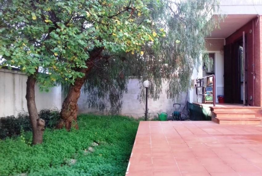 patio posteriore + giardino (5)